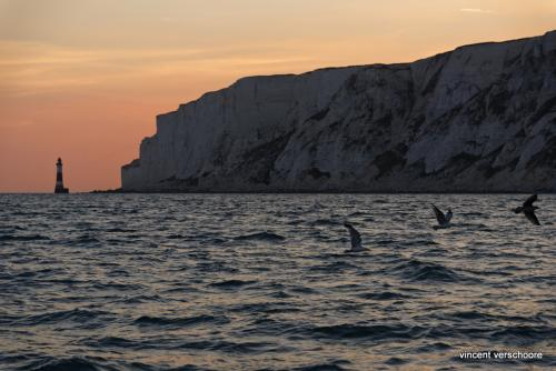 UK, Beachy Head, sailing