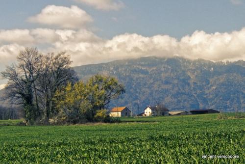 Challex, Jura