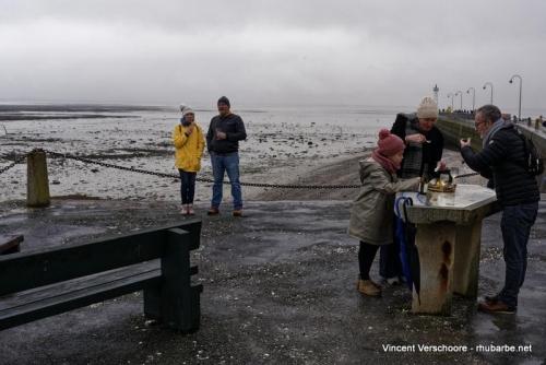 Cancale. Marché aux huîtres.