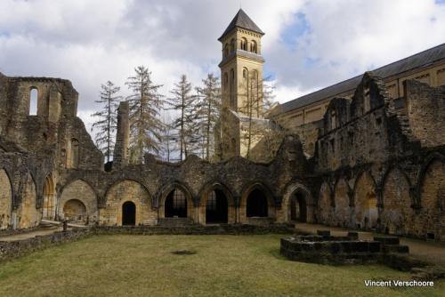 Abbaye d'Orval - ruines et nouveau clocher.